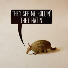 they see me rollin', they hatin'. (dedicated to the armadillo family that is squatting under my deck)