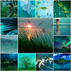 BLUE/GREEN: Collage (via Nefes & Breath)