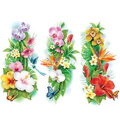 Arrangement from tropical flowers and leaves vector on VectorStock