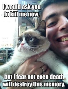 oh grumpy cat ;)