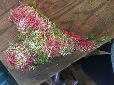 Her har jeg lagt op blomster lyng