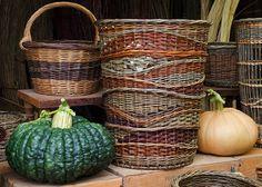 squash and Katherine Lewis willow basket