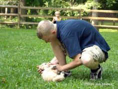 ca9962379 79 best Animals and servicemembers images on Pinterest in 2018 ...