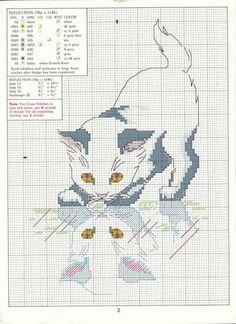 QUADROS ( GRÁFICOS - zefinhadedeus - Álbuns da web do Picasa