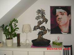 Der erste seiner Art: ich hatte meinen Bonsai leider ermordet, wollte den Stamm aber nicht wegwerfen. Einen neuen Topf aufgebaut; Blätter ausgestochen, teilglasiert und geschwärzt und auf die Leiche gebunden. Bonsai, Painting, Photo Illustration, Paintings, Draw, Drawings, String Garden