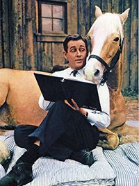 Mister ed ❤️ oh how I loved that show. Pretty Horses, Beautiful Horses, Palomino, Mister Ed, Alan Young, Horse Movies, Nostalgia, Old Shows, Vintage Tv