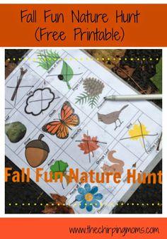 Fall Fun Nature Hunt (Free Printable) || The Chirping Moms
