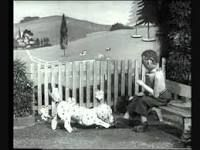 the wooden tops - spotty dog Those Were The Days, The Good Old Days, Back In Time, Back In The Day, Spotty Dog, The Lone Ranger, Childhood Days, I Remember When, Kids Tv
