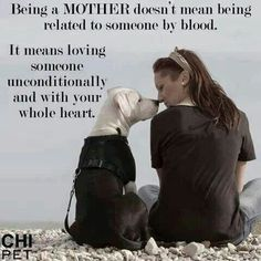 ♥ for my furbaby
