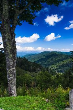 Newfound Gap Photo by Wiebke S. — National Geographic Your Shot