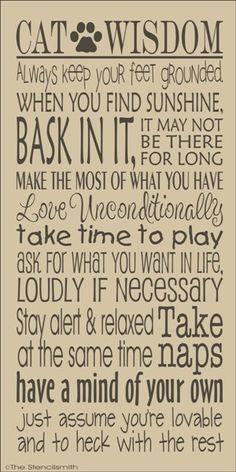 CAT WISDOM :D (I love this!)