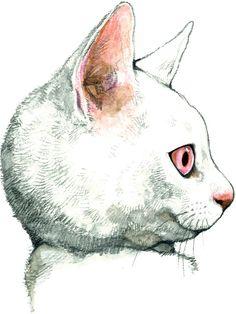 """メラントリックヘムライトの""""猫と変身""""ショップが新宿伊勢丹にオープン"""