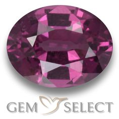 GemSelect features this natural untreated Rhodolite Garnet from Mozambique. This Red Rhodolite Garnet weighs 1ct and measures 6.9 x 5.3mm in size. More Oval Facet Rhodolite Garnet is available on gemselect.com #birthstones #healing #jewelrystone #loosegemstones #buygems #gemstonelover #naturalgemstone #coloredgemstones #gemstones #gem #gems #gemselect #sale #shopping #gemshopping #naturalrhodolitegarnet #rhodolitegarnet #redrhodolitegarnet #ovalgem #ovalgems #redgem #red Red Gemstones, Loose Gemstones, Natural Gemstones, Buy Gems, Natural Red, Gem S, Gemstone Colors, Stone Jewelry, Birthstones