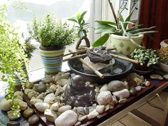 arreglos de mini jardines zen - Google Search