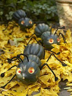 Make Kooky Pumpkin Creatures: Great Ants (via Parents.com)