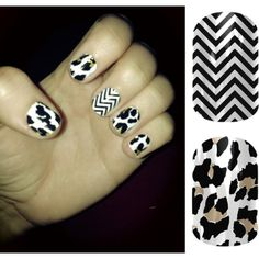 """""""Jamberry Leopard and Black and White Chevron"""" by elizabeth-erb on Polyvore"""