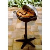 Found it at Wayfair - Indoor / Outdoor BBQ with Dome Cover
