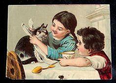 ¤ CHROMOS DECOUPIS 19EME. Le repas du chat.