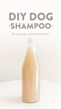 Do your pup a solid and make this DIY Dog Shampoo ⏤ it's all-natural, moisturizing and keeps the fleas (and dandruff) away! Homemade Dog Shampoo, Puppy Shampoo, Diy Shampoo, Dog Flea Shampoo, Diy Pet Shampoo Dogs, Drugstore Shampoo, Best Dog Shampoo, Clarifying Shampoo, Silhouette Designer Edition
