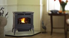 Pellet stoves and inserts from Regency are an environmentally friendly way to heat your home and save money. Not only are these inserts easy to operate and built to last like the wood stoves, they are cost effective heaters with a variety of styles that fit your lifestyle.