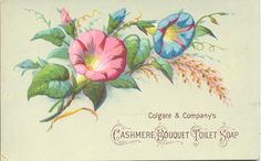 Cashmere Bouquet hand soap lable (vintage, from Colgate & Company) <> (pretty bits 'n bobs)