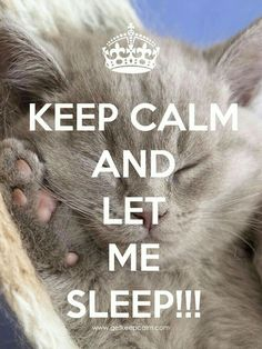 Let me sleep! - Keep Calm - Katzen Keep Calm Posters, Keep Calm Quotes, Keep Calm Bilder, Keep Calm Wallpaper, Cat Wallpaper, Qoutes, Funny Quotes, Motivational Sayings, Quotes Quotes