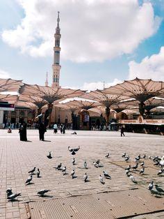 Sizin kadar hür olsaydım, ayrılmazdım Medine-i Münevvere'den. Islamic Wallpaper Hd, Quran Wallpaper, Mecca Wallpaper, Masjid Haram, Al Masjid An Nabawi, Mecca Madinah, Mecca Masjid, Islamic Images, Islamic Pictures