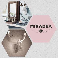 Átlátszó szarvas trófea | Miradea