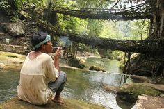 Le Meghalaya est une province indienne située à l'extrême Nord Est du Pays au sud est du Bangladesh.        Depuis des générations, les habitants y construisent des ponts en tressant les racines des arbres de chaque coté des rivières.Ils entrelacent patiemment les racines au fur et à mesure qu'elles poussent. Les ponts ainsi créés font souvent deux étages et mesurent parfois plus de 30m de long !