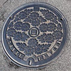 Chrysanthemum - Ina river basin sewerage system, Hyogo pref. - @tmw_colored- #webstagram