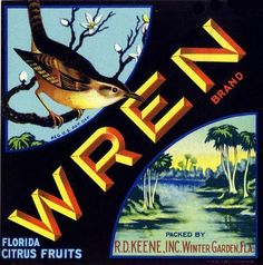 Wren, Florida citrus