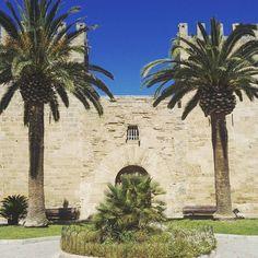 #alcudiatown #oldtownalcudia #travel #travels #familyholidays #familienurlaub #mallorca #alcudia #malle #sonne #palmen