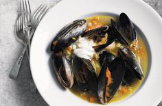 Mussels in a fennel-scented broth
