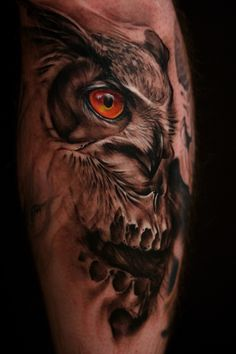 Owl morphing with skull. Very cool.