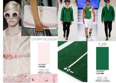 Cherry Blossom / Turf Colour Trend SS 2015 Photo: Trend Council #fashion #style #forecast DORLY DESIGNS: We've Got It In The Bag! Your Top Fashion Colours S/S 2015