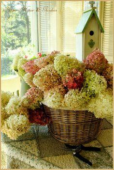 Aiken House & Gardens: Basket of Hydrangeas. Hortensia Hydrangea, Hydrangeas, Bountiful Baskets, Bouquet, Fru Fru, Welcome Spring, Mellow Yellow, Garden Styles, Garden Inspiration