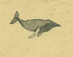 Humpback Whale Art Print by Method2Madness | Society6