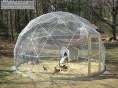 SALE 20 ft geodetische koepel buiten volière kooi door SunriseDomes