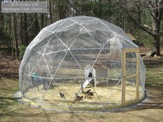 20 Ft Geodesic Dome Outdoor Aviary, Flight Cage, Animal Pen