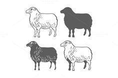 Domestic Animal Sheep Design Element by idimair on Creative Market