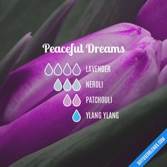 Peaceful Dreams Essential Oil Diffuser Blend
