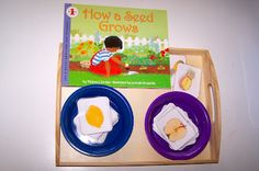 Fruit Matching Activity (whole to half) to Go With Book, How a Seed Grows