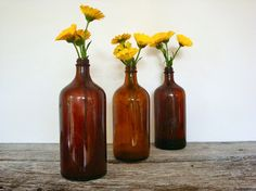 weathered wood, apothecary bottles, a few yellow flowers