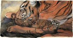 """Tiger was born, fluffy and small.... illustrated by Jackie Morris -- From """"Lord of the Forest"""" by Caroline Pitcher"""