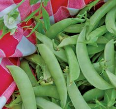 Amish Snap Peas!
