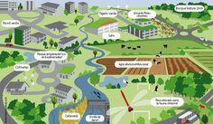 """La infraestructura verde o como se define desde la Comisión Europea, """"red…"""
