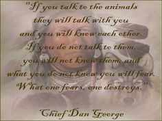 If you talk to the animals they will talk with you and you will know each other.  If you do not talk to them you will not know them and what you don't know you will fear.  What one fears, one destroys ~ Chief Dan George