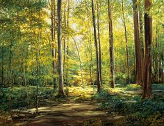 Sacred Grove, by Frank Magleby, oil, Pictures Of Christ, Church Pictures, Lds, Magic Forest, Dark Forest, Sacred Groves, Forest Sunset, Ocean Photography, Photography Tips