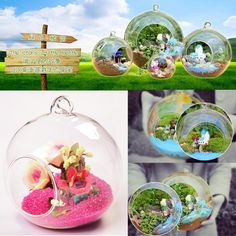 8cm Hanging Glass Flowers Plant Vase Stand