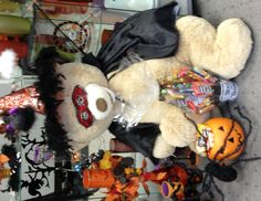 Our Mascot Petals is ready for Halloween, all decked out in a Witches Costume and pumpkin ready to receive candy treats